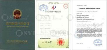01-Letters-Patent_01