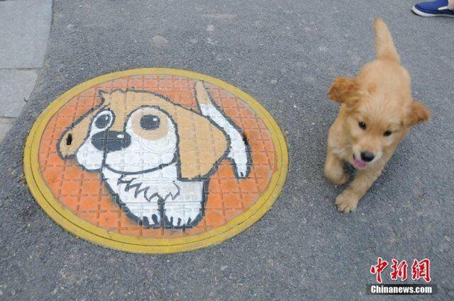 manhole cover 003